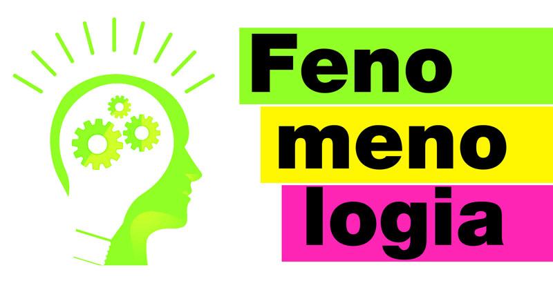 Entenda o que é Fenomenologia e sua origem.