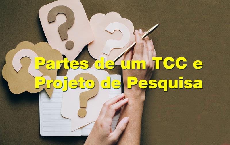 Passo a passo explicando cada parte do TCC