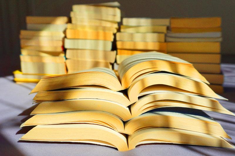 Tipos de pesquisa de revisão de Literatura para TCC