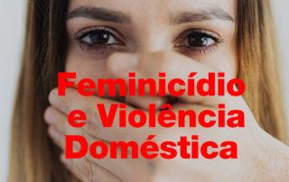 Projeto de Pesquisa sobre Violência Doméstica